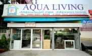 国外水族店水草缸造景aqualiving