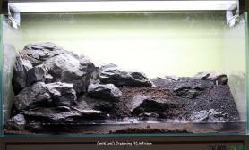 石头这样摆如何水草缸你还能给出更好的意见吗?