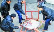 浙江台州发现罕见月鱼出现原因至今是个谜(图)