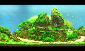 2012ADA参赛作品-----九曲溪