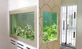 鱼缸设计营造家中海洋风情(多图)
