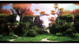 水草缸造景沉木水草泥化妆砂青龙石150CM及以上尺寸设计55