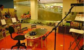 沉木青龙石造景缸与商业空间-12