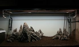 120青龙石景骨架