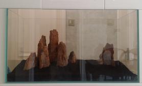 木化石这样摆可以吗?