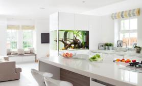 白色为基调的家居装修中水草缸点缀一抹翠绿的水草