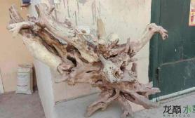 我的沉木怎么放好看