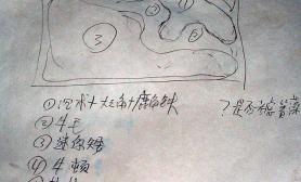 《枫林秋霜》--半年来的草缸历程