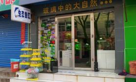 水族箱造景老家的水族商店
