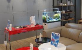 沉木青龙石造景缸与商业空间-31