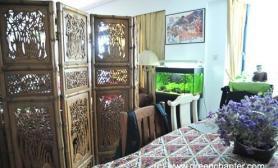 沉木青龙石造景缸与家装空间-06