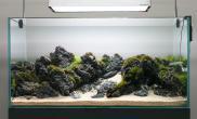 青龙石水草造景(120CM)大缸