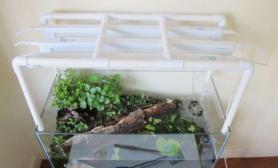 水族箱造景水陆缸---虾蟹的天下