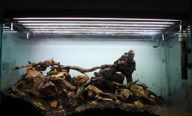 水草缸造景沉木水草泥化妆砂青龙石90CM尺寸设计28