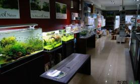 国外水族店:Aquaeden shop