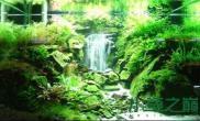 水族箱造景很神奇的瀑布