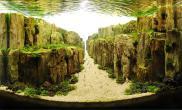 世界各國的超強魚缸水草造景高手作品