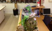 沉木青龙石造景缸与办公空间-05