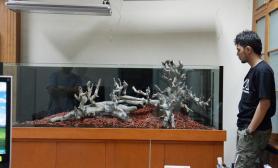 水草缸造景沉木水草泥化妆砂青龙石150cm及以上尺寸设计24