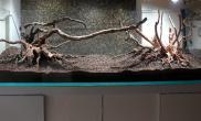 180阴性缸建缸骨架初稿3个微调方案水草缸请鱼友们帮助选择
