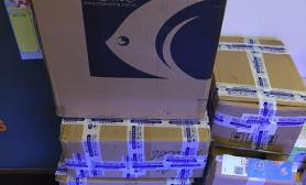 新手一米五鱼草缸10个月后翻缸纪实鱼缸水草造景图片祝大家新年快乐鱼缸水族箱鱼缸水族箱鱼缸水族箱