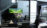 沉木青龙石造景缸与家装空间-12