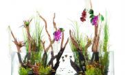 水草缸造景沉木水草泥化妆砂青龙石150CM及以上尺寸设计31