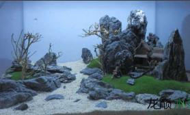 3个小缸的山石造景