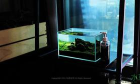 小石景缸水草缸居家必备良品鱼缸水族箱