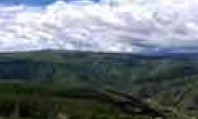釆风回来水草缸整理了些草缸造景可以参考的图鱼缸水族箱(一)