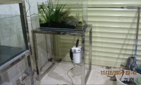 水草造景你还在为鱼缸杂乱的布置设备安装苦恼吗水草缸进来一起学习鱼缸水草造景