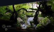 这么逼真的瀑布水草缸是怎么做到的?