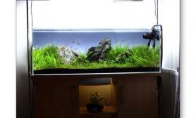 水族箱造景120cm的青龙石水草缸