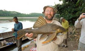 亚马逊雨林新发现有甲壳吃木材的奇特鲶鱼(多图)