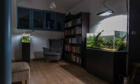 沉木青龙石造景缸与家装空间-46