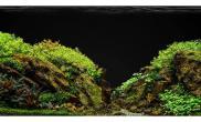简单几种水草造景化妆砂青龙石150CM