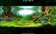 << 緣 >>     Destiny