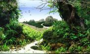 水草造景2014AGA国际造景大赛中大缸组十佳作品——《山重水复》