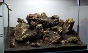 这样的火山岩缸也是很不错的鱼缸水族箱