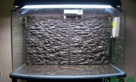 天然水草缸