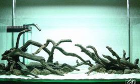 沉木青龙石水草造景120CM尺寸设计08