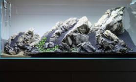 水草造景(120CM及以上)青龙石造景摆石