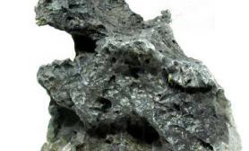 水缸中常见的石头