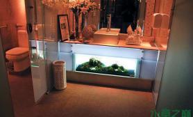 地柜水草缸