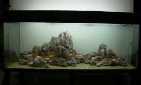 沉木和石头做出高高的山峰水族箱
