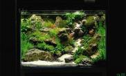 小缸大制作水草缸逼真石景缸