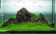 国外简单清新一石景缸水草缸帮忙看看这石头叫什么?