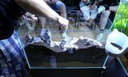 水草缸造景沉木水草泥化妆砂青龙石60CM尺寸设计27