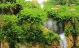 比赛完翻缸瀑布造景——灵山秀色