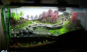敞口水陆缸17